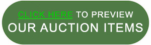 Click Here to Preview Our Auction Items