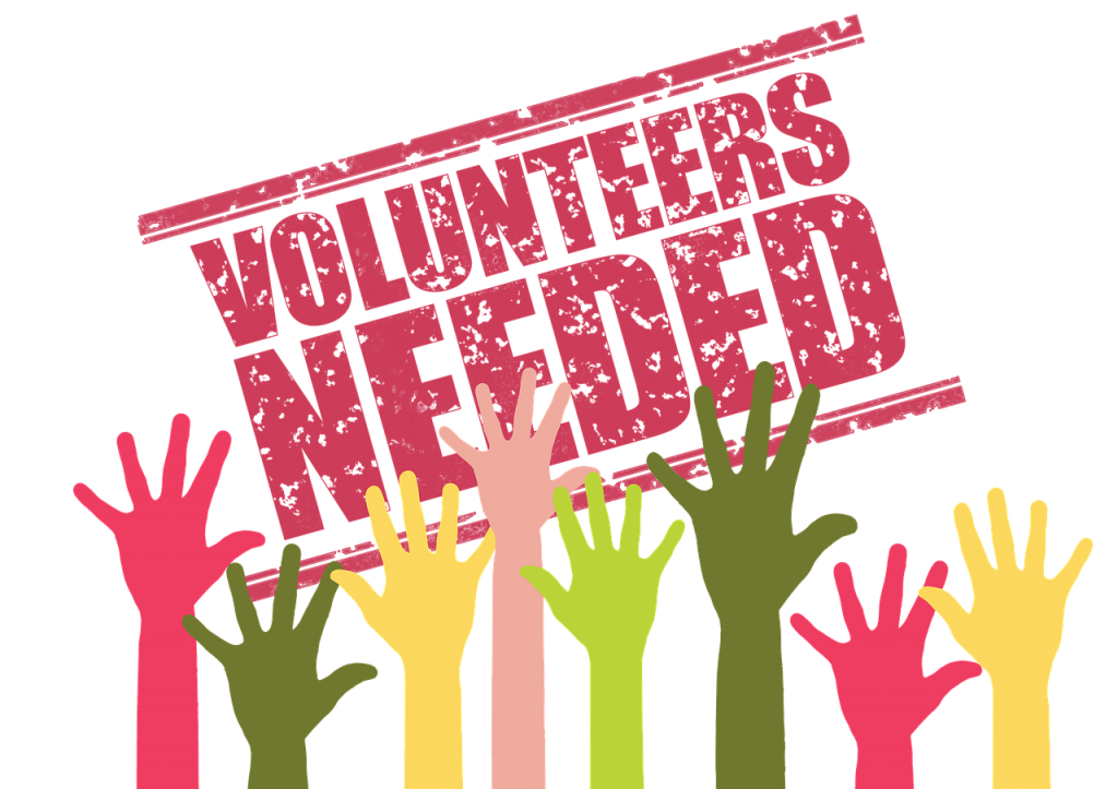 Selecting the Right Charity Volunteer Opportunity for You - Charity Grow